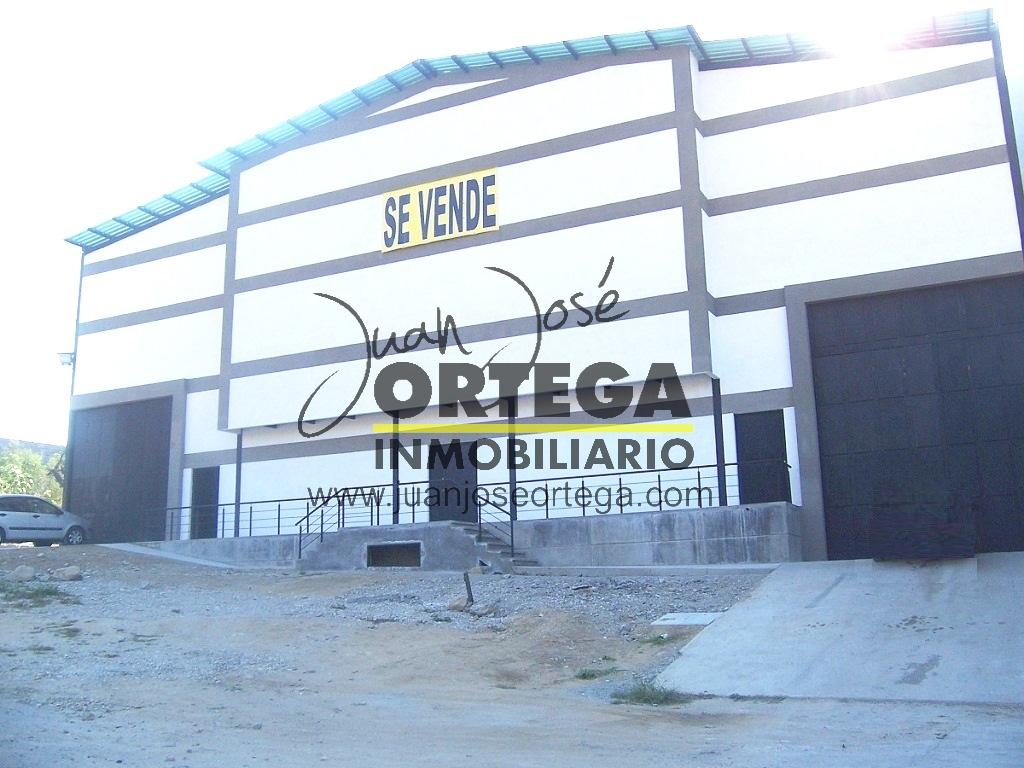 Galpón Industrial, Avenida Centenario Ejido.
