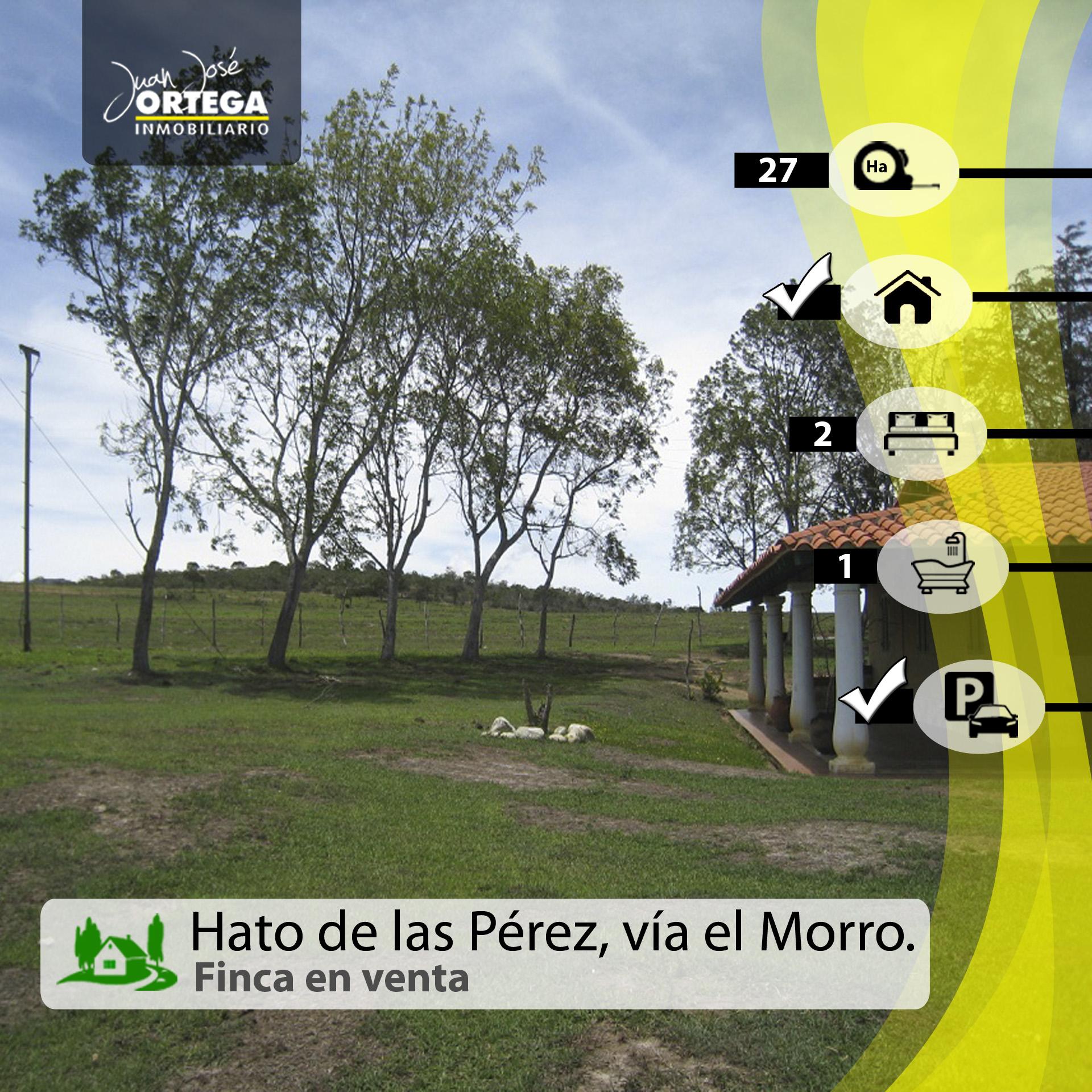 Finca en Mérida, Hato de las Pérez, Vía el Morro.